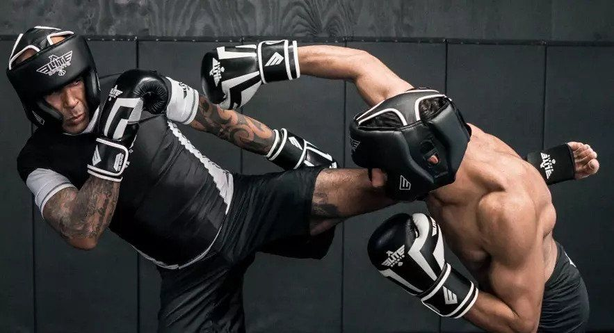 Which Brand of Boxing Gloves Should You Choose?